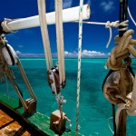 Grenadines - Tobago Cays (1)