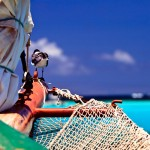 union _island_grenadines (18)